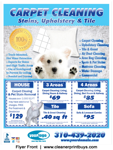 Cleaning Flyer (8.5 x 11) #C0005