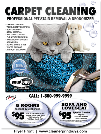Carpet Cleaning Flyer 85 X 11 C0007
