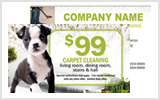 Carpet Cleaner Business Cards c0003