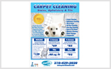 Carpet Cleaning Flyers c0005