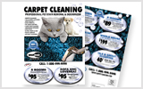 Carpet Cleaning Flyers c0007