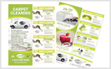 Carpet Cleaning Flyers c1005