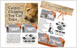 Carpet Cleaning Flyers c1024