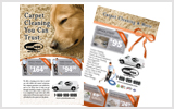 Carpet Cleaning Flyers C1024 8.5 x 5.5