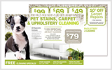 Carpet Cleaning Postcards c0003