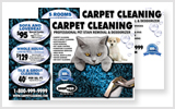 Carpet Cleaning Postcards c0007